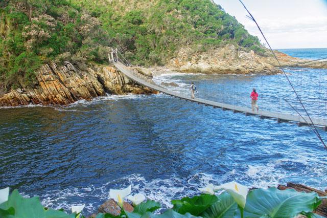 garden route south africa - Garden Route