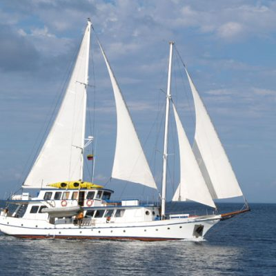 Small Ships & Yacht Style Cruises