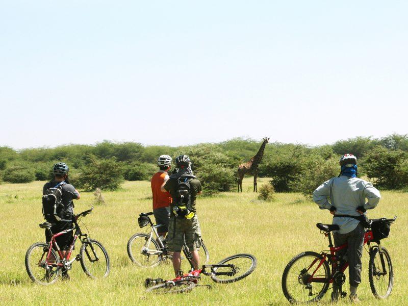 Africa - Tanzania Cycle Safari