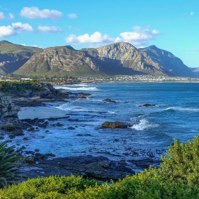 Whale Coast Hermanus